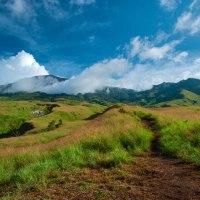 Savanna Sembalun Lawang regions of Mount Rinjani