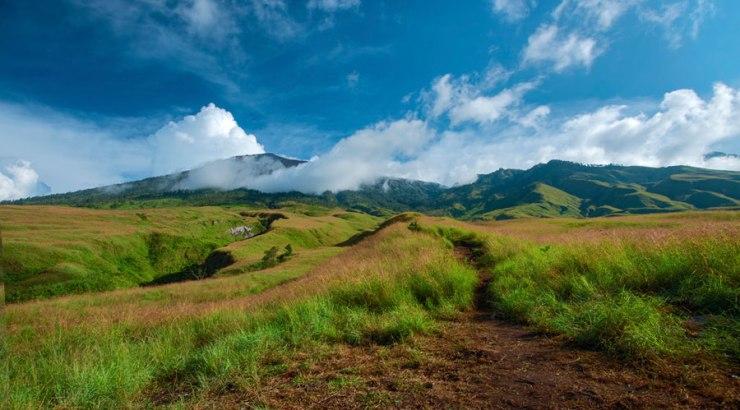 Savannah Sembalun Lawang Mount Rinjani